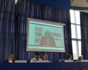 Dunja Mijatović, OSCE Representative on Freedom of the Media, addressed the conference in a video message